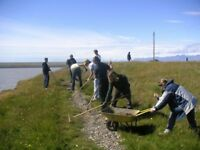 Volunteer in Iceland: Environmental program in the Eastfjords