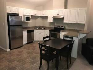 Furnished Clareview Condo - Available Now