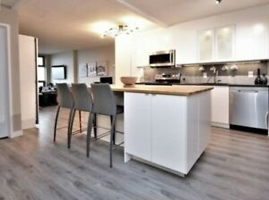 DALHOUSIE UNIVERSITY MODERN CONDO 8 MONTH LEASE