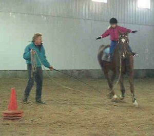 Horseback Riding Lessons..Fun way to get in shape! Strathcona County Edmonton Area image 2