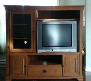 Entertainment Center & Television
