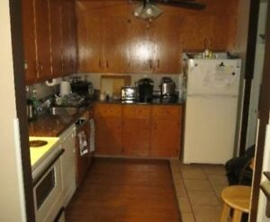 Conveniently Located and Affordable- Looking to Share Large Apt.
