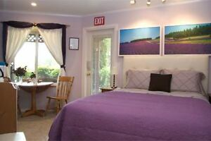 *Fall Special* Oceanview Mini-Suite on Sunshine Coast