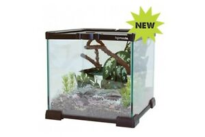KOMODO GLASS SMALL REPTILE VIVARIUM INSECT SPIDER TANK