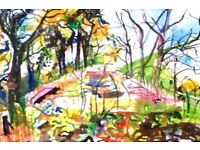 Exploring & Drawing in the Woods, Saturday 3rd June