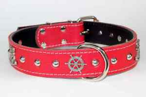LEATHER COLLARS W/TURQUOISE RIVETS Prince George British Columbia image 4