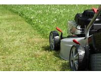 Grass cutting, patio power washing and general garden maintenance in the Caversham & Reading area