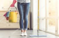 Looking to hire a fantastic cleaner!!