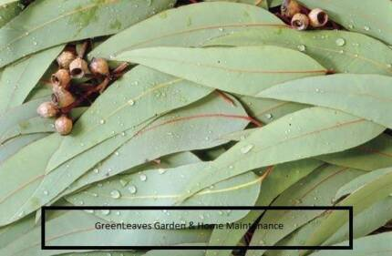GreenLeaves Garden & Home Maintenance Cooranbong Lake Macquarie Area Preview