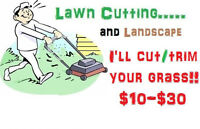 Lawn Cutting and Lanscape