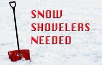 Snow Shovelers Needed