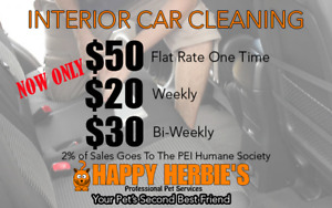 Full Interior Detailing $50 flat rate