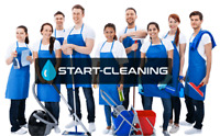 experinced cleaning service
