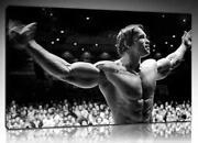 Arnold Schwarzenegger Canvas