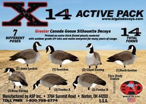 Now in Canada X14 Silhouette Goose Decoys