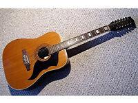 Rare Eko 12 string guitar
