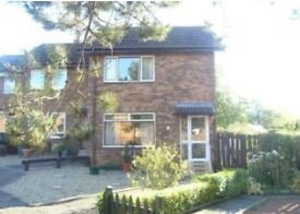 2 Bedroom end terrace house Gavin Hamilton Court, to rent £535 pcm DG & GCH