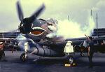 Skyraider Junkee