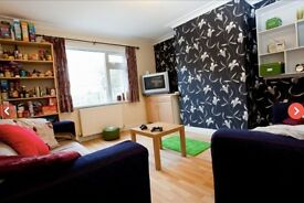 **STUDENT HOUSE** 1 large double bedroom, £82 per week, Headingley, Leeds.