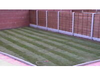 Gardening services cheap. Gardens, Drives, Fencing, Paving
