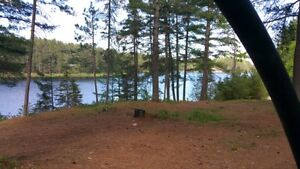 Lake front under the pines tent or tent trailer (camping site)
