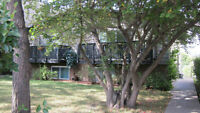 Beautiful, Fully Furnished, 2 Bedroom Condo