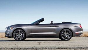 2016 Ford Mustang FM GT 5.0 V8 6 Speed Automatic Convertible Concord Canada Bay Area Preview