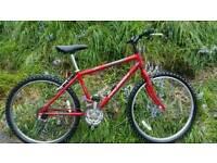 Raleigh Firefly bike, very neat