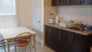 2 or 3 Bedroom Apt. Plateau Mont-Royal Renovated Avenue du parc