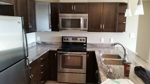 Executive Two Bed Two Bath Condo- $1,800 /Month Avalible Now