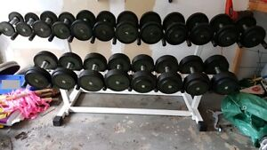 Commercial Grade 5-50LBS Set of Round Pro Style Dumbbells + Rack