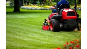 Grass cutting! Property maintenance 15% off seasonal packages