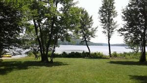 Paddle North~Muskoka Buck lake private lakefront cottage rental