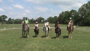 Summer horse and pony camp for kids 6yr +