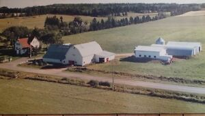 Hobby Farm for Sale in Norboro