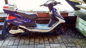 Electric Scooter/E-bike --Mobylette/Vélo electrique (XB-615)