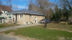 Newly Refreshed Duplex Lower For Lease, Walk to GO!