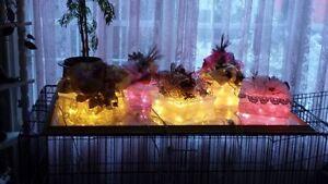Christmas glass block's Kitchener / Waterloo Kitchener Area image 6
