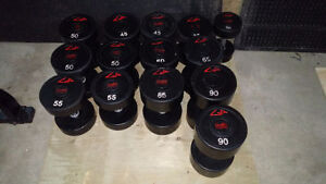 GP Commercial Urethane Dumbbells -50lbs 60lbs,65lbs,85lbs