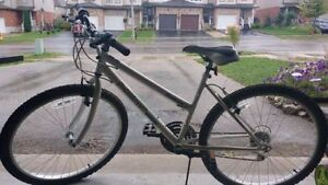 Mountain Bike in execllent shape