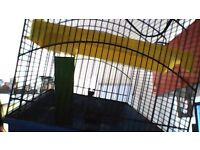 Large hamster cage can be used guinepig cage as the cage as missing 2 bars!