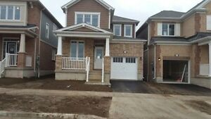 """WOW """" BRAND NEW HOUSE FOR LEASE """" Kitchener / Waterloo Kitchener Area image 1"""