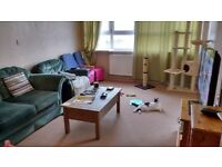 LONDON TO HOVE & SURROUNDING AREAS HOMESWAP. 2 BEDROOM MAISONETTE FOR YOUR 2 BEDROOM PROPERTY.