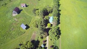Country Home and Acreage Near Westport