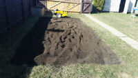 FALL YARD CLEANUPS - BEST PRICES