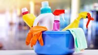 SPRING CLEANING..CLEANING..2-3 cleaners for larger jobs