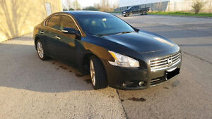 Immaculate 2010 Nissan Maxima SE!!!