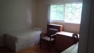 Share spacious house with students or professional Kitchener / Waterloo Kitchener Area image 2