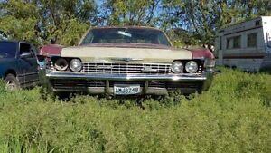 WANTED : 1967 or 1968 IMPALA / CAPRICE