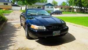 2000 Ford Mustang Convertible - Price reduced for quick sale